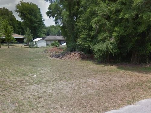Citrus County, Fl $16,000 Neg : Inverness : Citrus County : Florida