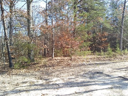 Secluded Lot : Farmville : Cumberland County : Virginia