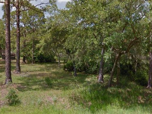 Wakulla County, Fl $35,000 Neg : Ochlockonee Bay : Wakulla County : Florida