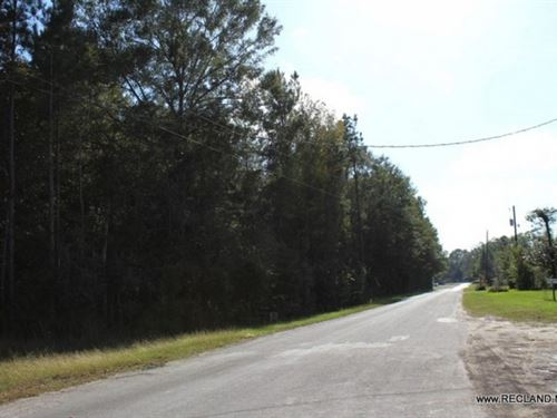 13.5 Ac, Wooded Tract For Commerci : Jasper : Texas