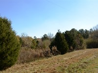 South Moore Road Tract : Greenville : Greenville County : South Carolina
