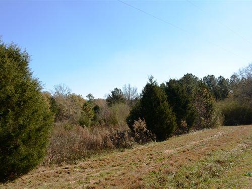 South Moore Road Tract : Greenville : South Carolina