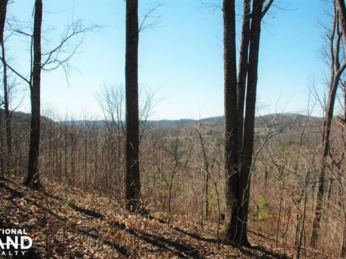 West Knoxville Lot : Farragut : Knox County : Tennessee