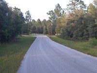 Lot Located On Active Golf Course : Williston : Levy County : Florida