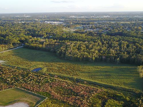 Sutton Road Acreage : Lakeland : Polk County : Florida