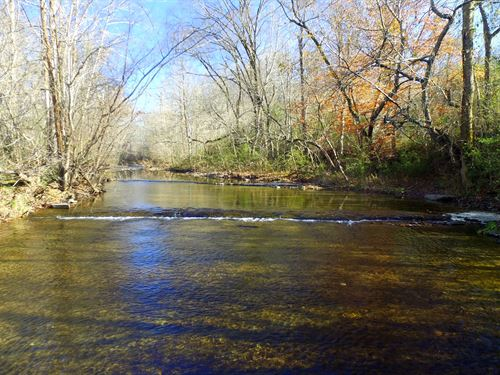 17 Acres On Leipers Creek : Santa Fe : Maury County : Tennessee