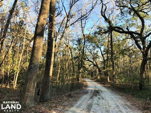 Huspa Creek Dr, 2 Ac, Private Lot : Seabrook : Beaufort County : South Carolina