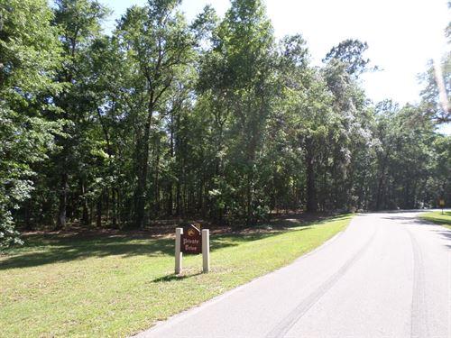 Bridle Ridge : Ocala : Marion County : Florida