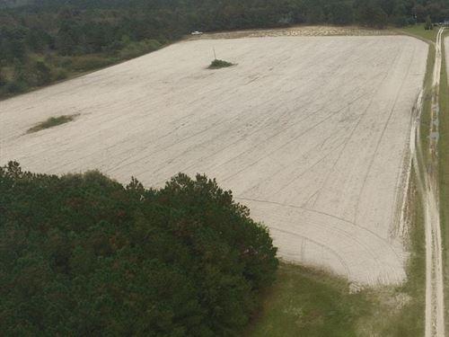 13 Acre Homesite Near Fayetteville : Roseboro : Sampson County : North Carolina
