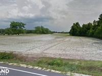 6 Acre Roseboro Homesite : Roseboro : Sampson County : North Carolina