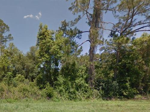 Bradford County, Fl $41,000 Neg : Keystone Heights : Bradford County : Florida