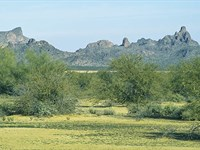 Quiet Desert Retreat : Arizona City : Pinal County : Arizona