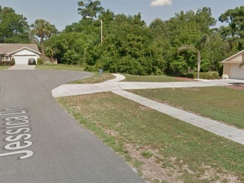 Hernando County, Fl $130,000 Neg : Spring Hill : Hernando County : Florida