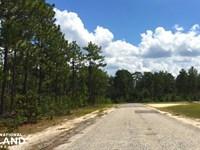 Elk Lodge Court Commercial Acreage : Lugoff : Kershaw County : South Carolina