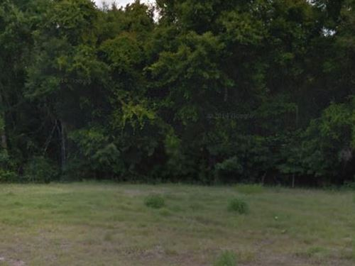 Wakulla County, Fl $20,000 Neg : Crawfordville : Wakulla County : Florida