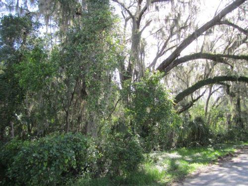 Hawthorne Bingo Tract : Hawthorne : Alachua County : Florida