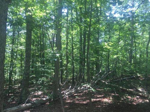 Simmons Sisters Tract : Bessemer City : Gaston County : North Carolina