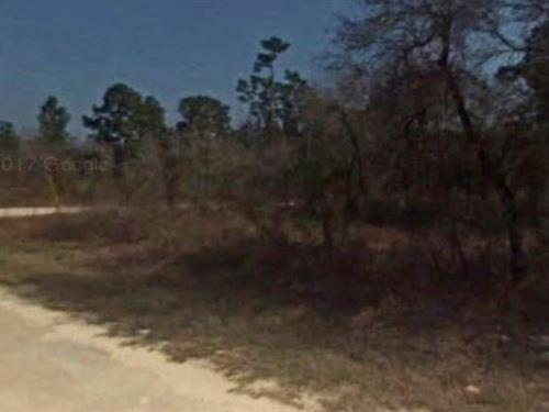 Hernando County, Fl $28,000 Neg : Brooksville : Hernando County : Florida