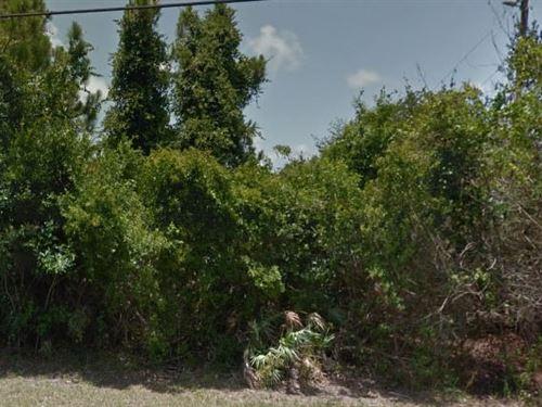Brevard County, Fl $25,000 Neg : Grant Valkaria : Brevard County : Florida