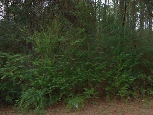 Okaloosa County, Fl 60,000 Neg : Laurel Hill : Okaloosa County : Florida