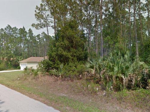 Flagler County, Fl $25,000 Neg : Palm Coast : Flagler County : Florida