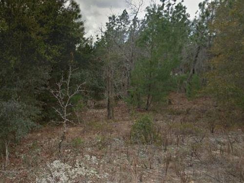 Putnam County, Fl $22,500 Neg : Interlachen : Putnam County : Florida