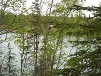 Alaskan Kenai River Lot, 200 ft WA : Soldotna : Kenai Peninsula Borough : Alaska