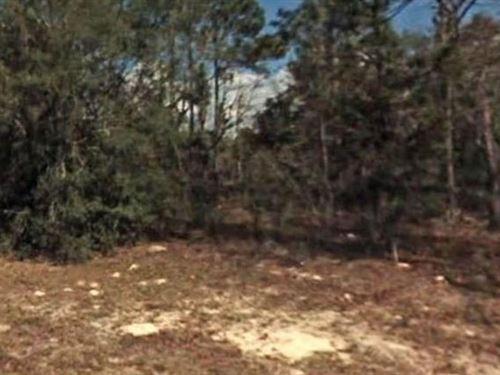 Citrus County, Fl $22,500 Neg : Citrus Springs : Citrus County : Florida