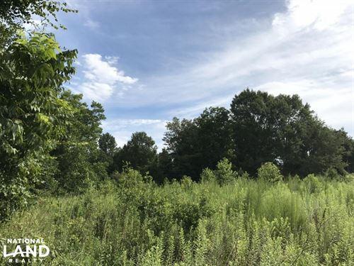 Rosindale Rd Recreation : Clarkton : Bladen County : North Carolina