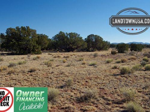 1.20 Acre Grand Canyon Subdivision : Williams : Coconino County : Arizona