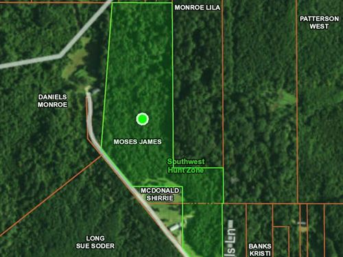 Nice Tract To Hunt Or Homestead : Centreville : Wilkinson County : Mississippi