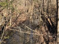 3.68 +/- Wooded Acres, Gordon Co : Ranger : Gordon County : Georgia