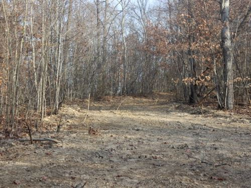 Mount Carmel Rd Tract 3, 10 Acres : Thurman : Gallia County : Ohio
