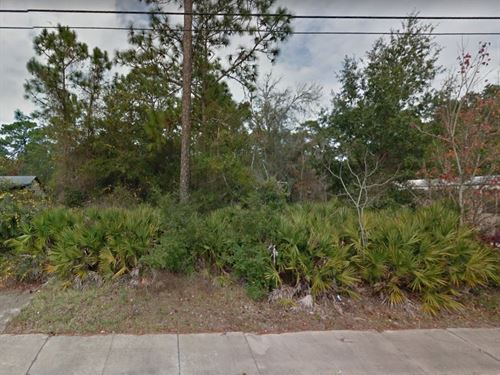 .1 Acres In Elkton, FL : Elkton : Saint Johns County : Florida
