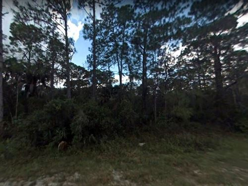 2.47 Acres In Naples, FL : Naples : Collier County : Florida