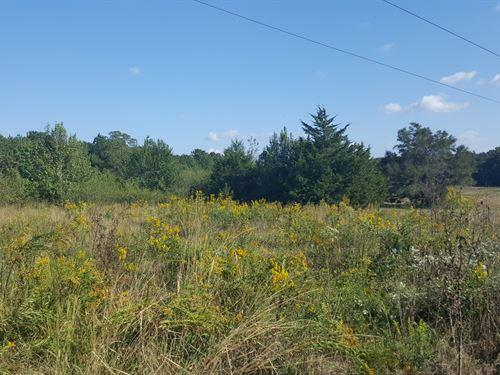 14.04 Acres Zoned Residential : Thomaston : Upson County : Georgia
