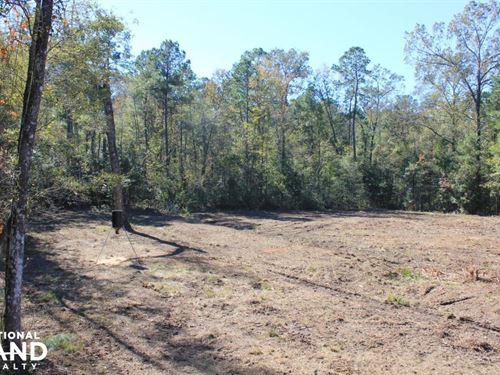 National Forest Land 10 Acres : Jamestown : Berkeley County : South Carolina