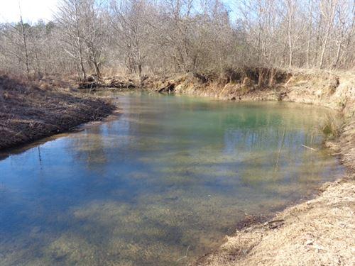 Great Tract W/ Year Round Creek : Savannah : Hardin County : Tennessee