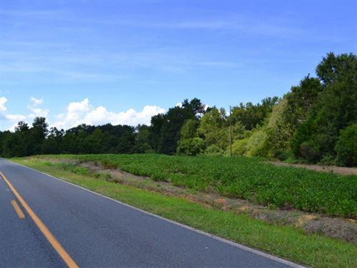 Austin North Tract : Marshville : Union County : North Carolina