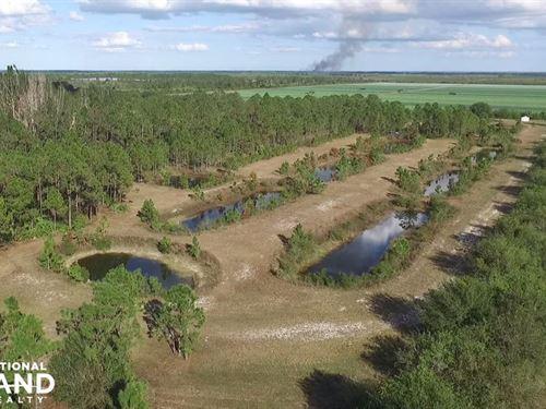10 Acre Fish Farm Charlotte County : Punta Gorda : Charlotte County : Florida