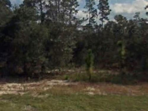 Levy County, Fl $245,000 Neg : Dunnellon : Levy County : Florida