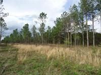 5 Acre Farms - $1000 Down : Milledgeville : Hancock County : Georgia