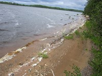Mls 168426 - Willow Flowage : Little Rice : Oneida County : Wisconsin
