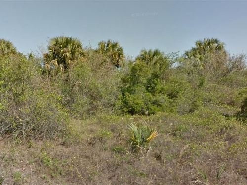Brevard County, Fl $50,000 Neg : Palm Bay : Brevard County : Florida