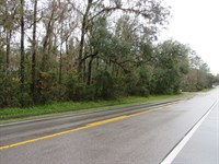 2.5 Acres In Beautiful Spring Lake : Brooksville : Hernando County : Florida