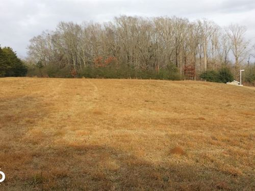 Vacant Lot : Florence : Rankin County : Mississippi