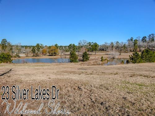 .13 Acres In Walker County : Huntsville : Montgomery County : Texas