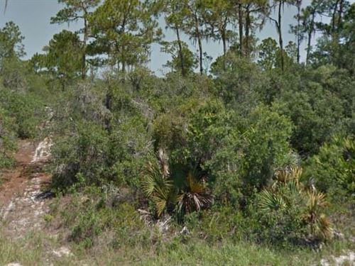Highlands County, Fl $22,000 Neg : Lake Placid : Highlands County : Florida