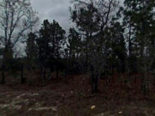 Hernando County, Fl $20,000 Neg : Weekie Wachee : Hernando County : Florida
