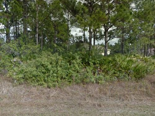 Lee County, Fl $30,000 Neg : Lehigh Acres : Lee County : Florida